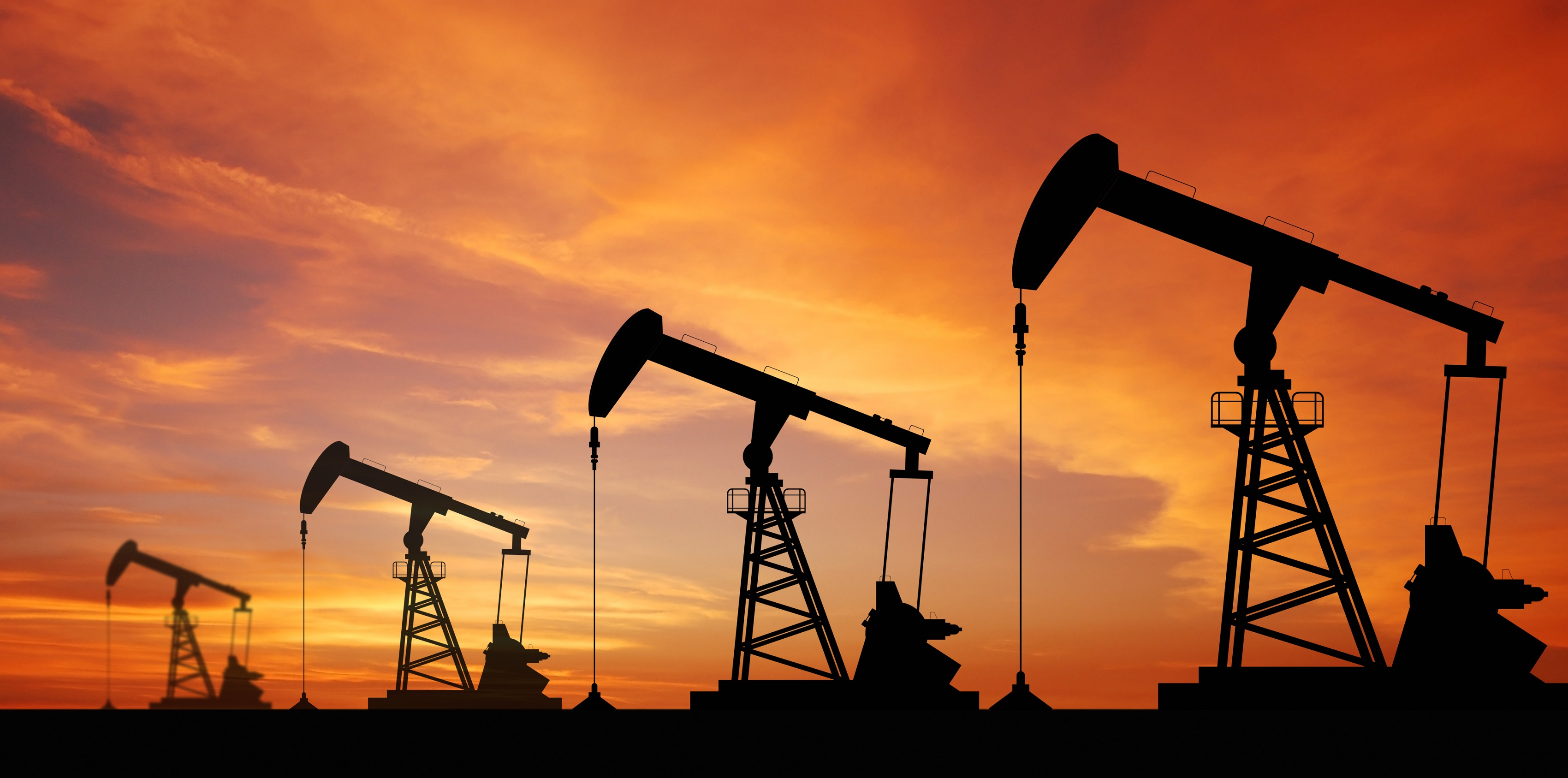 Over 100 hectares set aside for oil and gas investments
