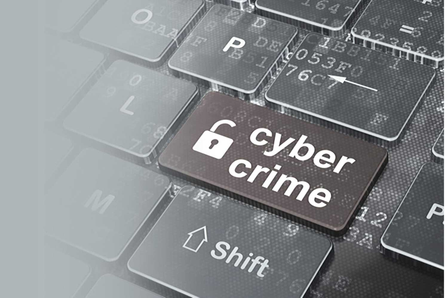 Govt committed to enforcing Cyber Crime Act