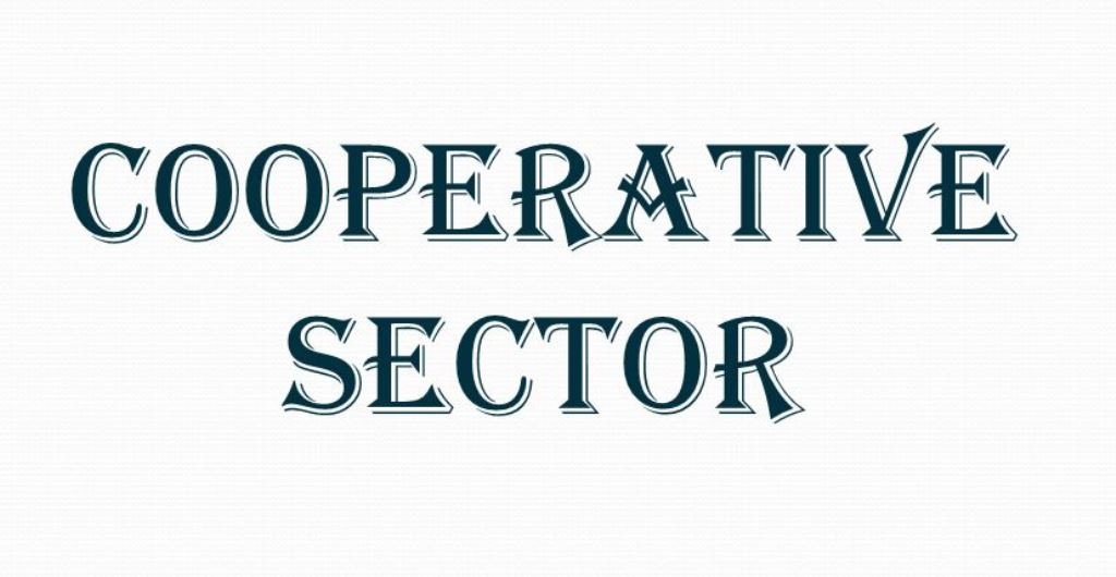 Dutch outfit to help cooperative sector