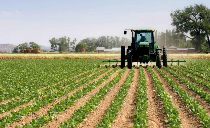 Tanzania favours serious investor in agriculture