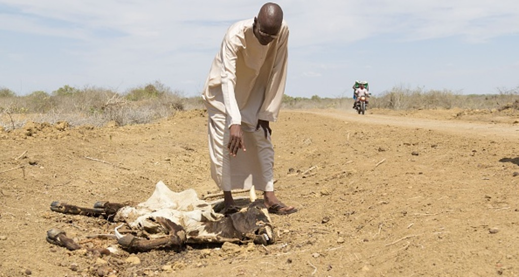 Kenyans in need of humanitarian aid to increase as drought persists