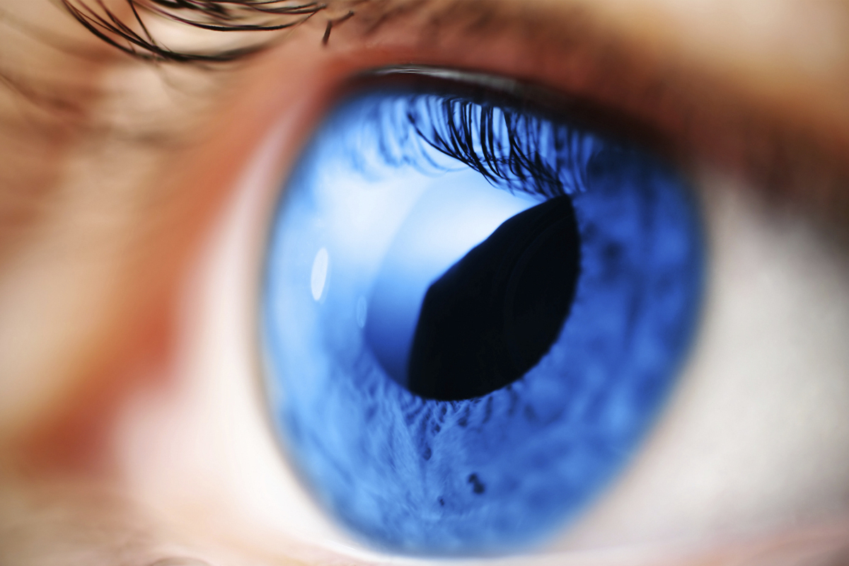 Go for early glaucoma tests, public tipped