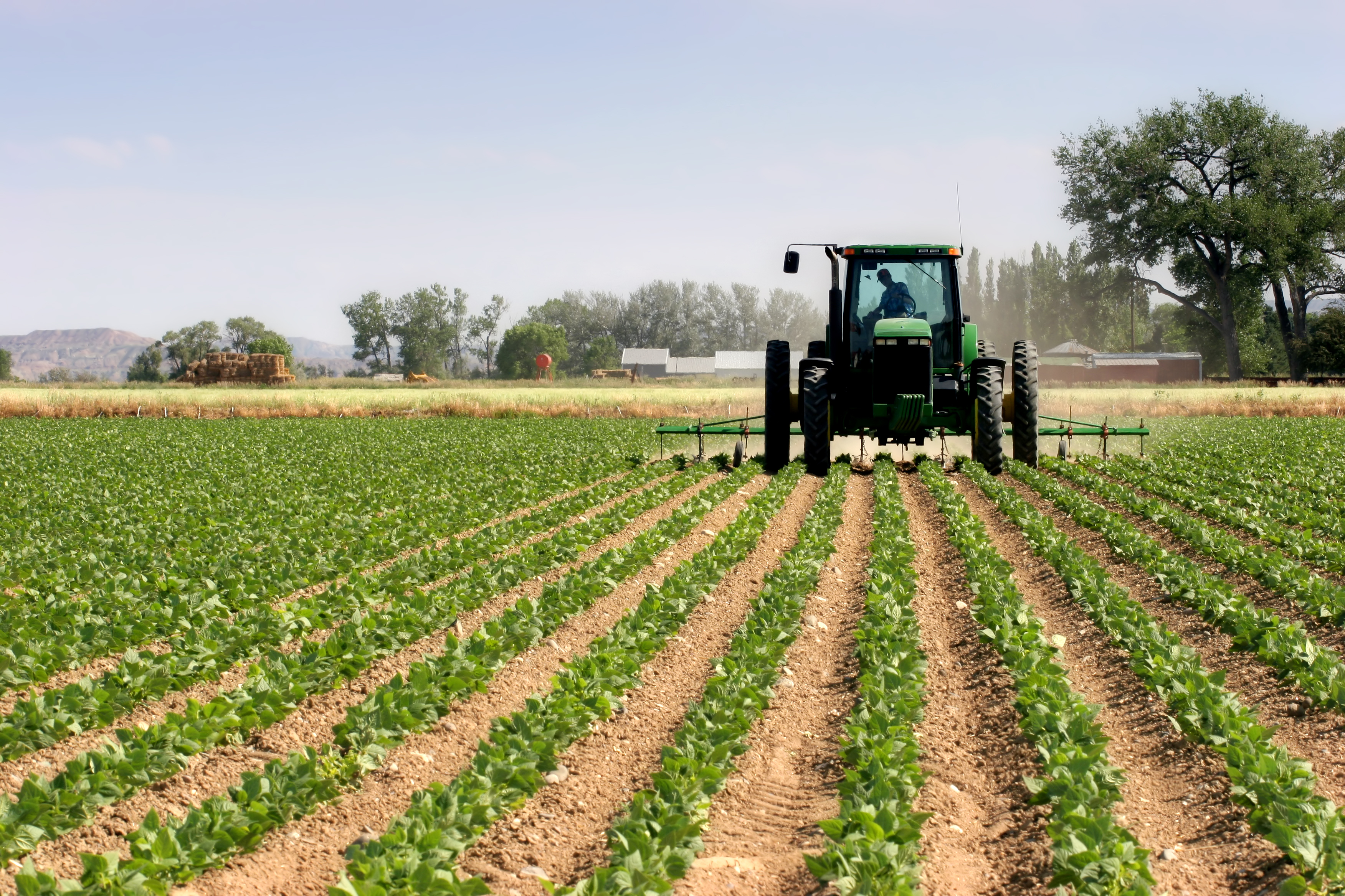 Over 1000 youth quipped on agribusiness skills
