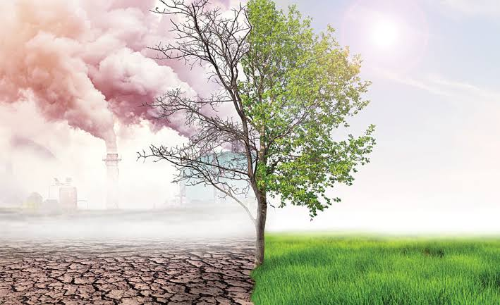 Dar upbeat on climate change fight