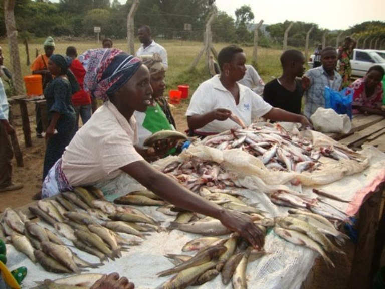 Bagamoyo residents to benefit from modern fish market