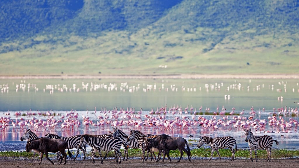 Ngorongoro Crater infrastructure ready as tourists jet in
