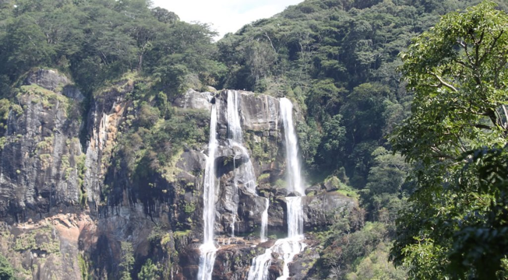 The beauty of Udzungwa Mountains speaks for itself