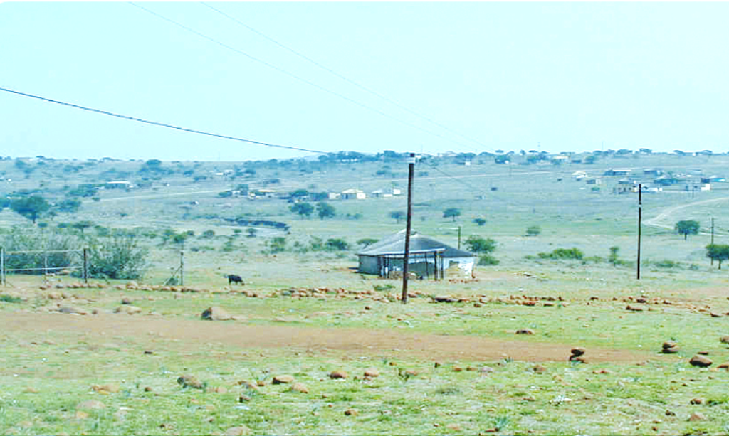 Implementation of REA projects set to boost economic development