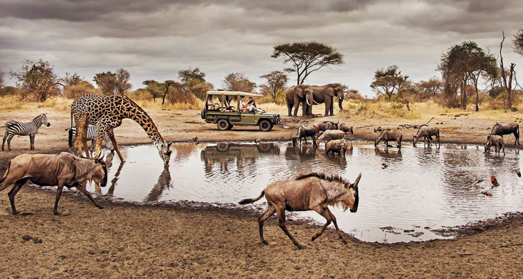 DID YOU KNOW? Nearly 30 Per cent of Tanzania is National Parks