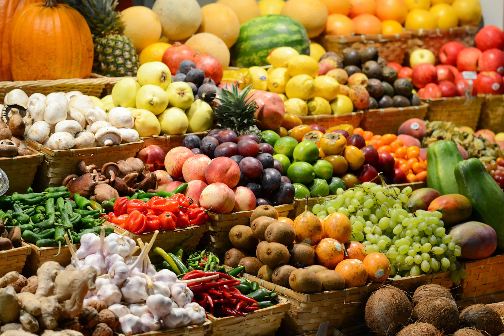Vegetable traders urged to capitalise on Middle-East market