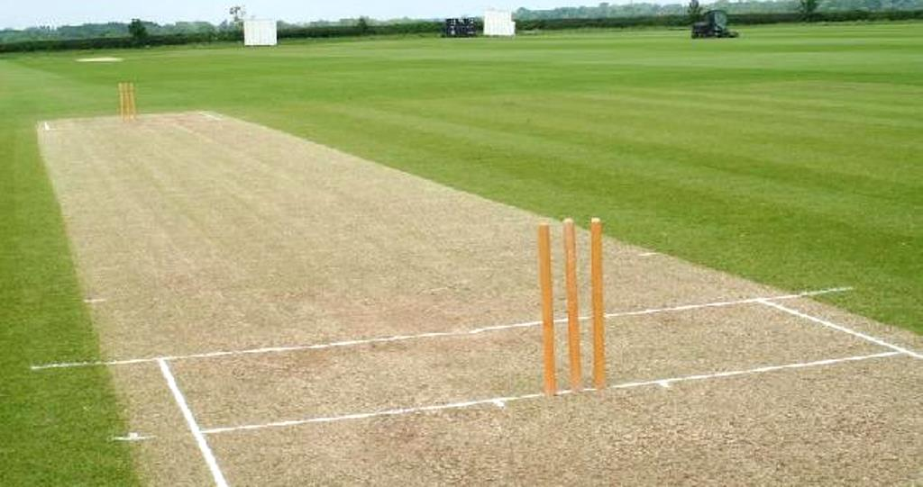 TCA keen to invest in cricket development