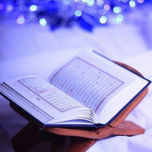 Sacking of Holy Quran's desecrator appropriate