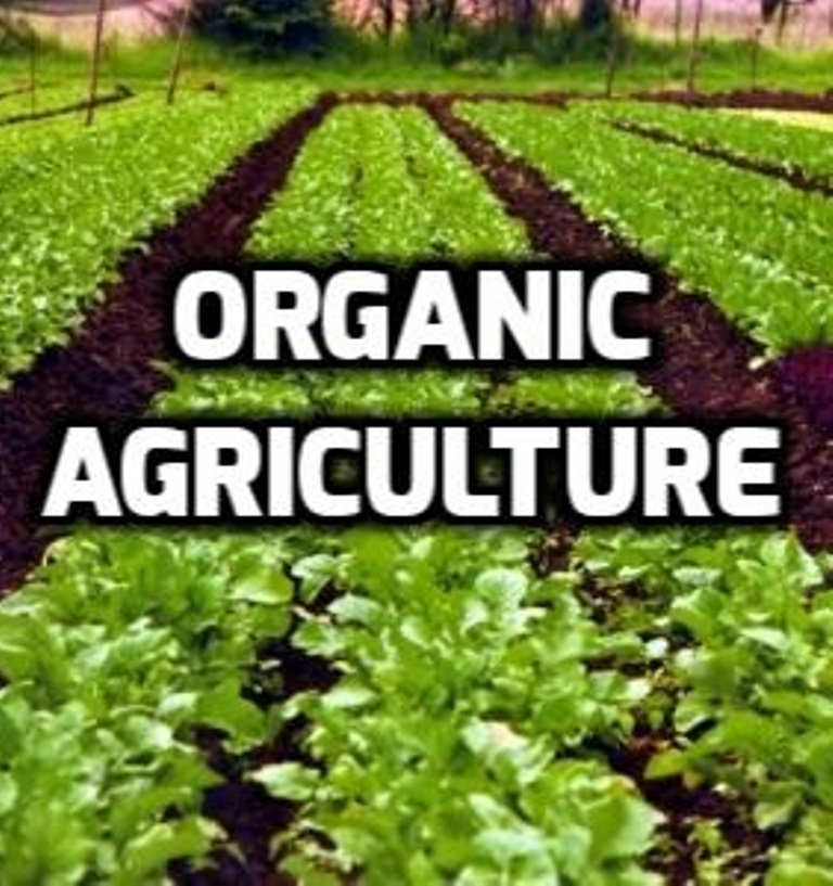 Organic agriculture, natural way for farmers to go