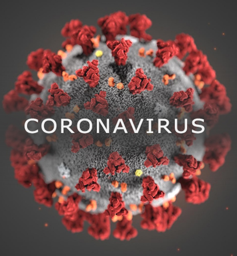 Coronavirus should help us study, respond better to future shocks