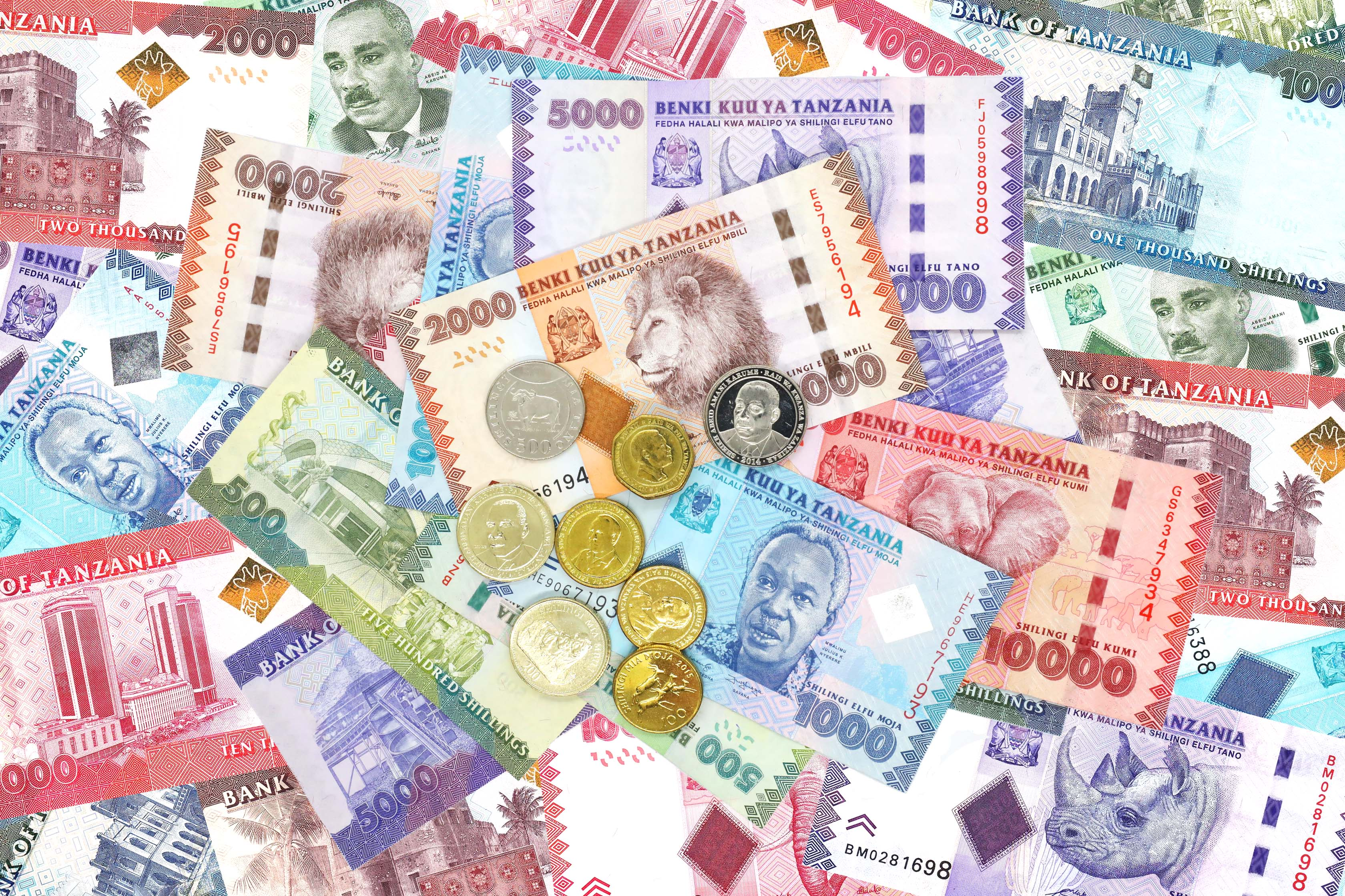 Tanzania shilling remains stable, thanks to gold inflows