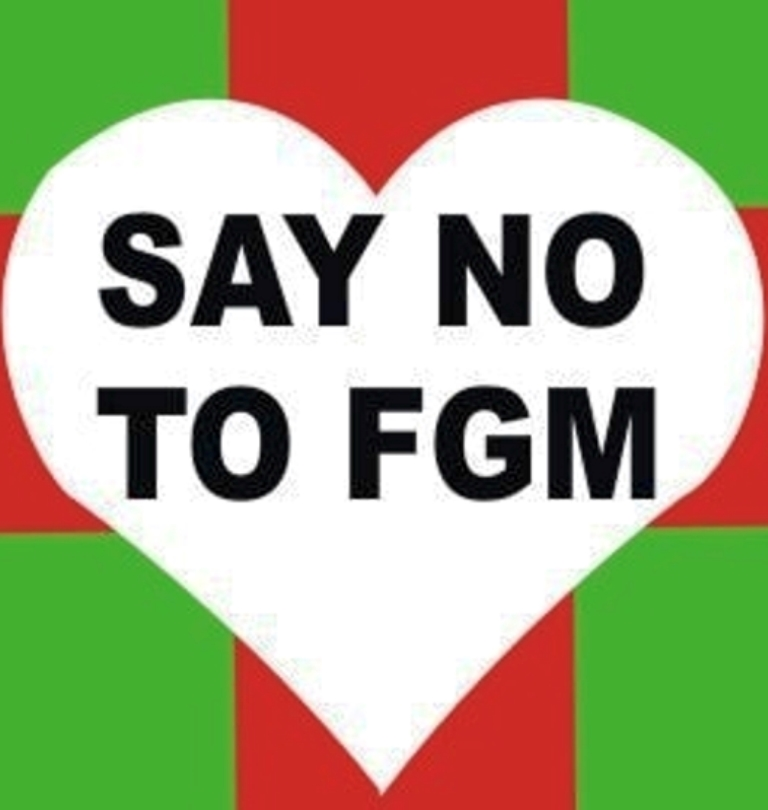 We should pronounce very big 'No' to rituals like FGM