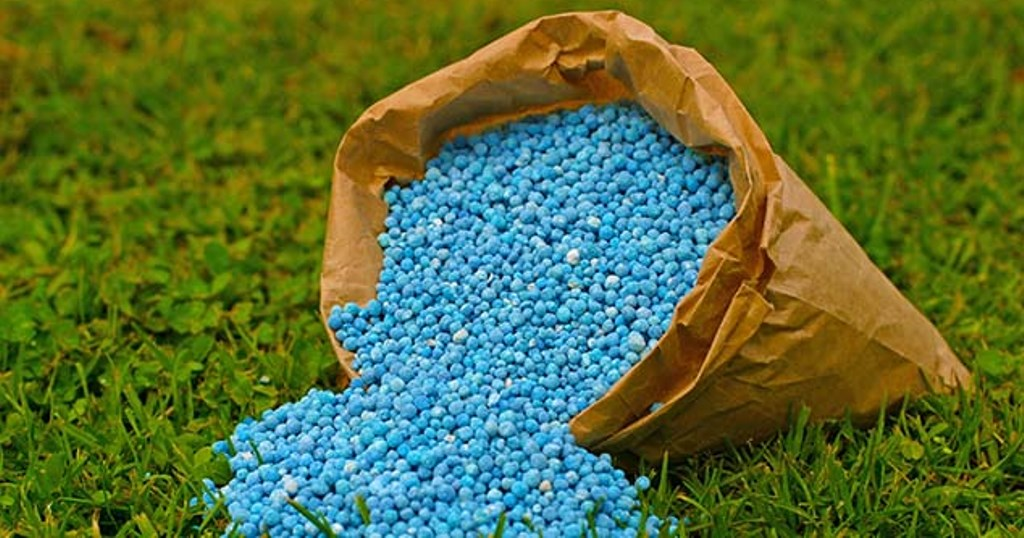 Right fertilizers to use training looms