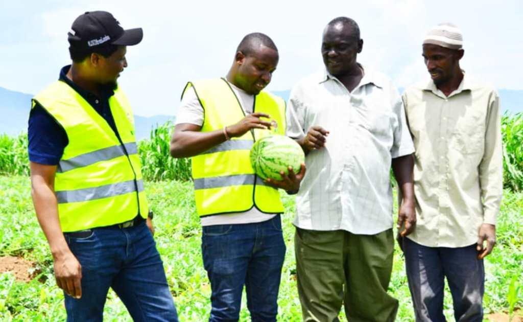 Watermelons farmer shares his success story as seeds company lauches special training