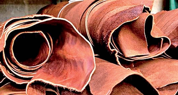 OIKOS EA to unlock leather industry potential to pastoralists' community
