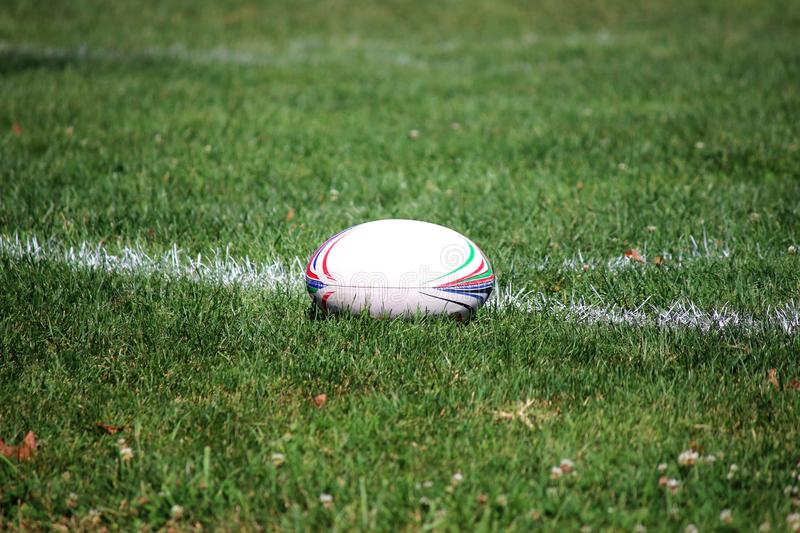 Elect new officials who will help revive rugby