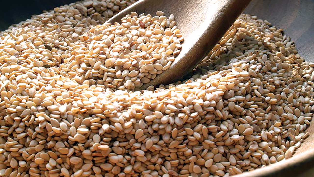 Coast's sesame sales expect to double