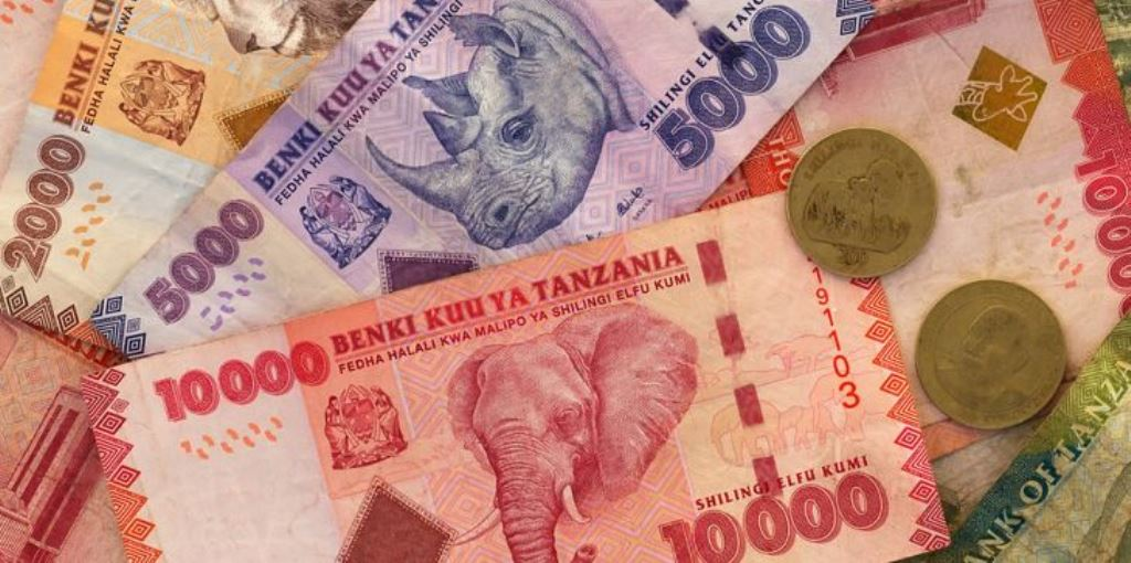 Shilling fall continues despite forex inflows