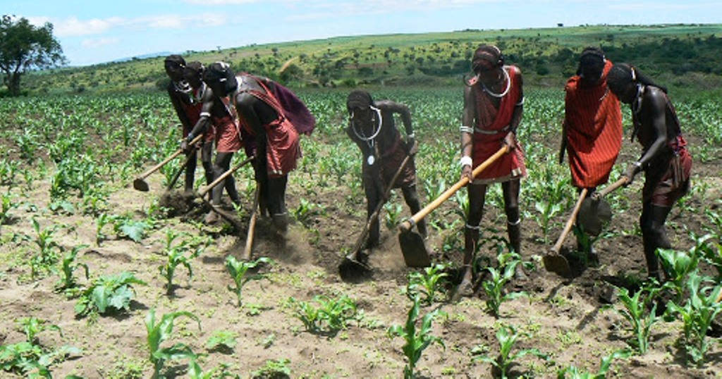 NDC advises farmers to grab opportunities