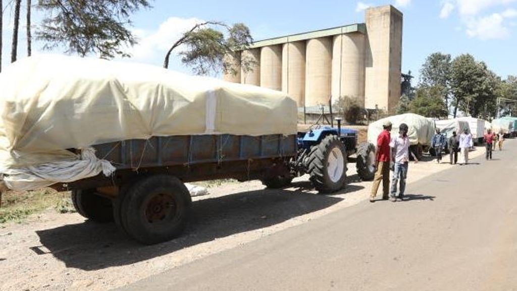 Cries as maize shortage hits Kenya