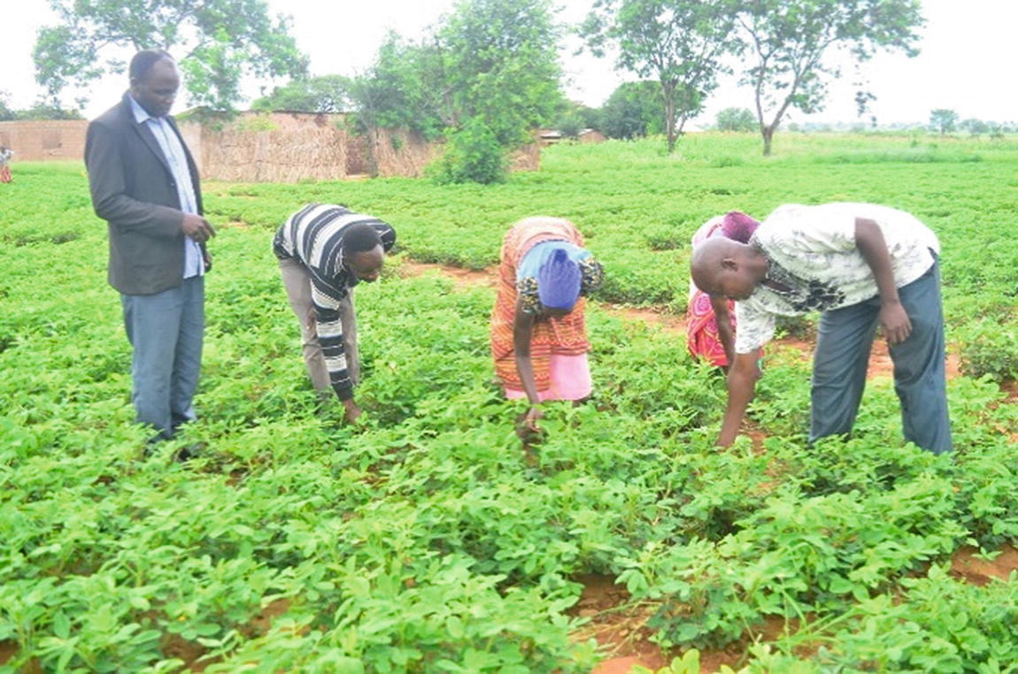 TARI technology to benefit farmers