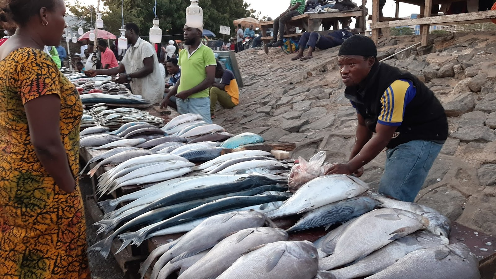 Ferry fish market supply low due to poor fishing tech