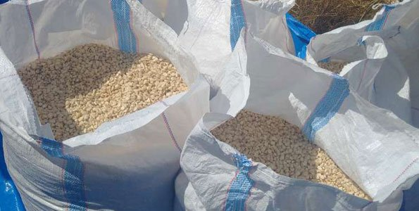 CCM directs NRFA to speed up maize purchase process